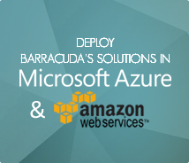 Microsoft Azure & AWS