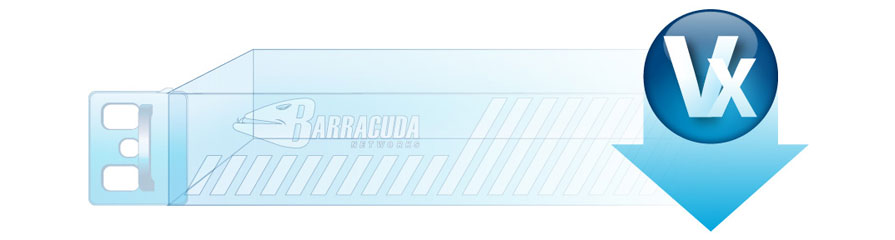 Barracuda NextGen Firewall VF100