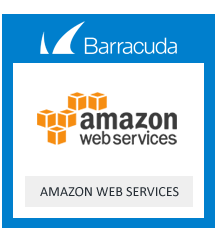 Barracuda Email Security Gateway for Amazon Web Service Level 6 - 1 year